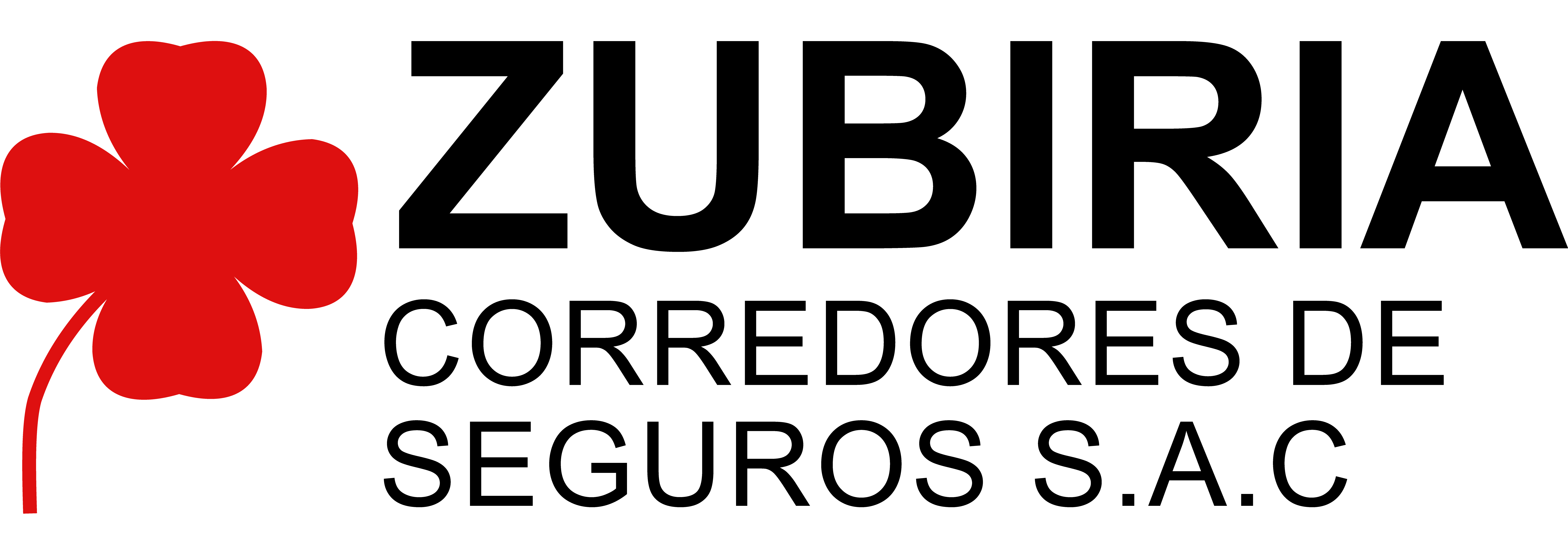 LOGO ZUBIRIA